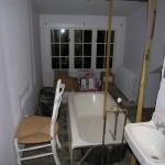 bath during remodel...